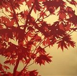 April Acer by Mary, Artist Print