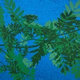 Summer Sorbus by Mary, Artist Print